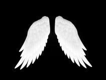 Les ailes de blanc Photo libre de droits