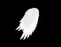 Les ailes de blanc Images libres de droits