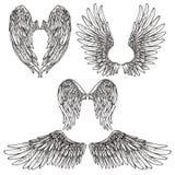 Les ailes esquissent l'ensemble Images libres de droits