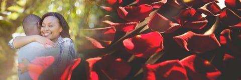 Les ajouter au ` s de valentine aiment les pétales de rose et la nature de transition Image libre de droits