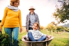 Les ajouter supérieurs au grandaughter faisant du jardinage dans l'arrière-cour font du jardinage image stock