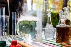 Les alchimistes de forêt Photographie stock