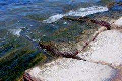 Les algues ont couvert la roche par l'océan photographie stock