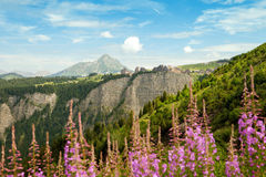 Les Alpes européens Images libres de droits