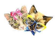Les amants de chat célèbrent le jour de valentines Photo libre de droits