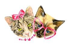 Les amants de chat célèbrent le jour de valentines Photographie stock libre de droits