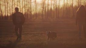 Les amants vont au côté du coucher du soleil Vue arrière clips vidéos