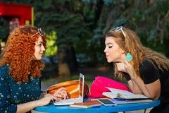 Les amies en parc résolvent des problèmes pour l'ordinateur portable Photo libre de droits