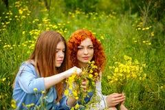 Les amies rassemblent des wildflowers Photos stock
