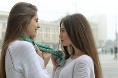Les amies regardent dans l'un l'autre des yeux du ` s, se tenant dessus sur un s vert Images libres de droits