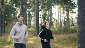 Les amis actifs dans les vêtements de sport pulsent en parc le jour ensoleillé appréciant la nature saine d'activité et d'automne banque de vidéos