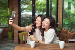 Les amis asiatiques de femme étreignant et font la photo de selfie ensemble Photographie stock libre de droits