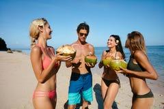 Les amis buvant la noix de coco fraîche arrosent par la mer Photographie stock libre de droits