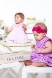 Amis de bébé Photos stock