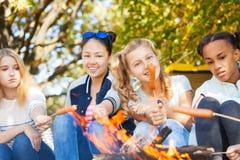 Les amis de l'adolescence s'asseyent sur le terrain de camping avec des saucisses Images libres de droits