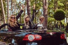 Les amis féminins à la mode joyeux soulèvent leurs mains tout en se reposant dans la voiture de luxe de cabriolet en parc Photographie stock