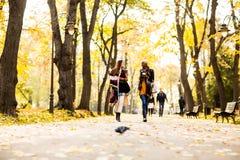 Les amis féminins multiraciaux marchant pendant l'automne se garent Images stock