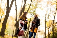 Les amis féminins multiraciaux marchant pendant l'automne se garent Image stock