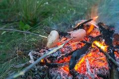 Les amis font cuire le champignon et la saucisse sur un bâton Images stock
