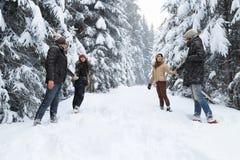 Les amis groupent la neige espiègle Forest Young People Outdoor de deux couples Image libre de droits