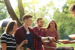 Les amis heureux grillant la viande et appréciant le barbecue font la fête dehors Photographie stock