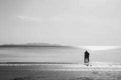 Les amis marchant en mer échouent, saison d'été isolée Images stock