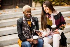 Les amis multiraciaux s'asseyant en parc d'automne, parlant et portent la Co Photos stock