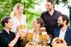 Les amis ou les collègues sur la bière font du jardinage après travail Photos stock