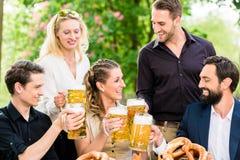 Les amis ou les collègues sur la bière font du jardinage après travail Image stock