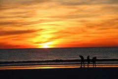 Les amis recherchent des coquilles pendant que le soleil place Photos libres de droits