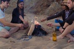 Les amis sur une plage sauvage ont allumé un feu et des guimauves de friture Photos stock