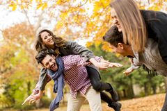 Les amis tenant des amies soutiennent dessus en parc d'automne Photo libre de droits