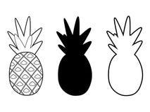 Les ananas ont placé différent illustration libre de droits