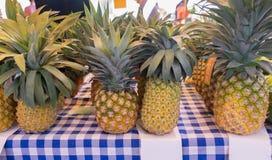 Les ananas organiques se sont vendus sur le marché d'agriculteurs image libre de droits