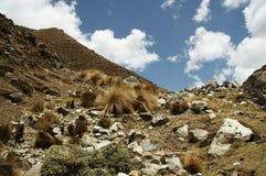 Les Andes au Pérou Photographie stock libre de droits