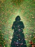 Les angles ombragent sur l'herbe images libres de droits