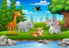 Les animaux apprécient la nature par la rivière Image libre de droits