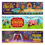 Les animaux de cirque montrent et la représentation d'illusionniste illustration de vecteur