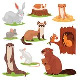 Les animaux de forêt dirigent l'écureuil animalistic de caractères de bande dessinée en castor ou lièvres creux et sauvages de la Photographie stock
