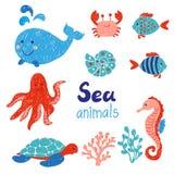 Les animaux de mer ont placé dans des couleurs rouges et bleues Photographie stock