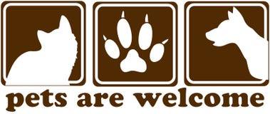 Les animaux familiers sont le signe bienvenu Photos stock