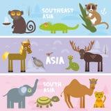 Les animaux mignons ont placé le serpent d'élans de grouse de tortue de léopard d'éléphant de lémur de singe de cheval de caméléo illustration libre de droits