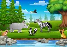 Les animaux sauvages apprécient la nature par la rivière Image libre de droits