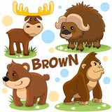Les animaux sauvages sont bruns Image stock