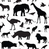 Les animaux silhouettent le modèle sans couture Silhouettes d'animal de faune Illustration Libre de Droits