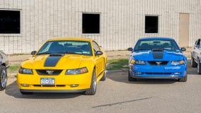 les années 1990 Ford Mustangs, allée de mustang, croisière de rêve de Woodward Images libres de droits
