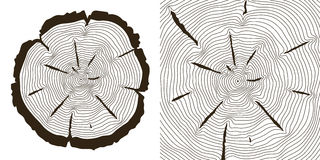 Les anneaux de croissance d'arbre, tronc de scie coupe l'illustration de vecteur illustration libre de droits