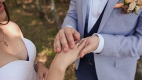 Les anneaux de mariage d'échange de jeunes mariés sur un fond de nature verte Le marié met l'anneau sur le bras de clips vidéos