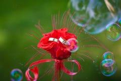Les anneaux de mariage d'or dans une rose rouge fleurissent photos stock