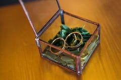 Les anneaux de mariage dans une boîte en verre sur le buis part Surface en bois Images libres de droits